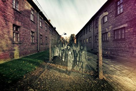 Auschwitz. Por Alex Ayann